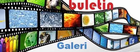 Buletin & Galeri